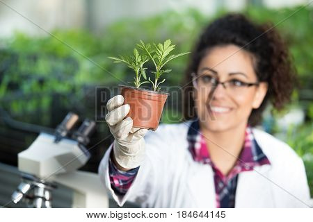 Biologist Holding Pot With Sprout