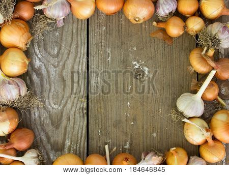 Square frame of onions. Space for text. Harvest of onion. Onion as background texture