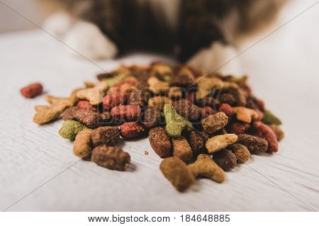 dry cat food prrr letters cat's paw