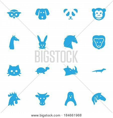 Set Of 16 Brute Icons Set.Collection Of Diver, Gecko, Ape And Other Elements.