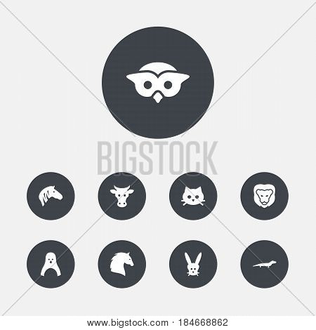 Set Of 9 Beast Icons Set.Collection Of Wildcat, Horse, Steed And Other Elements.