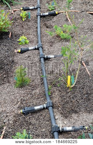 Bodelva, Cornwall, Uk - April 4 2017: Irrigation System At The Eden Project In Cornwall England