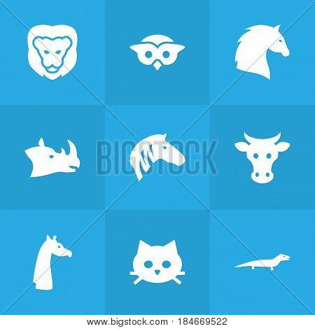 Set Of 9 Brute Icons Set.Collection Of Camelopard, Horse, Night Fowl And Other Elements.