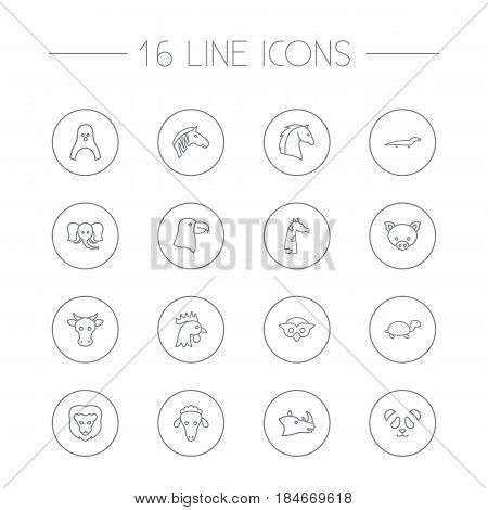 Set Of 16 Brute Outline Icons Set.Collection Of Eagle, Lizard, Sheep And Other Elements.