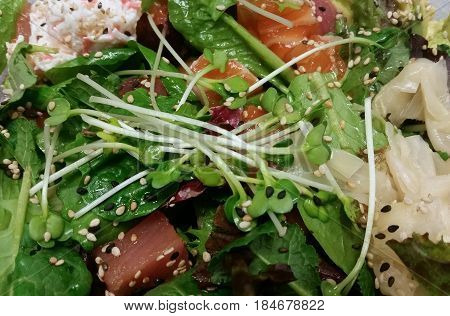 Close-up in a poke salad with tuna and salmon