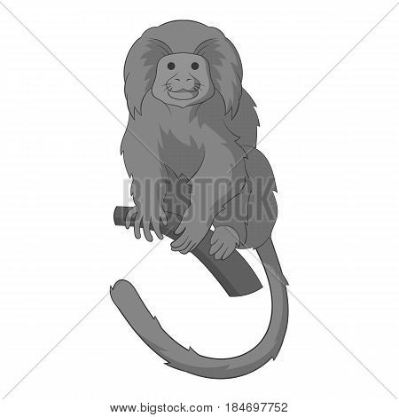 Lion tamarin icon in monochrome style isolated on white background vector illustration