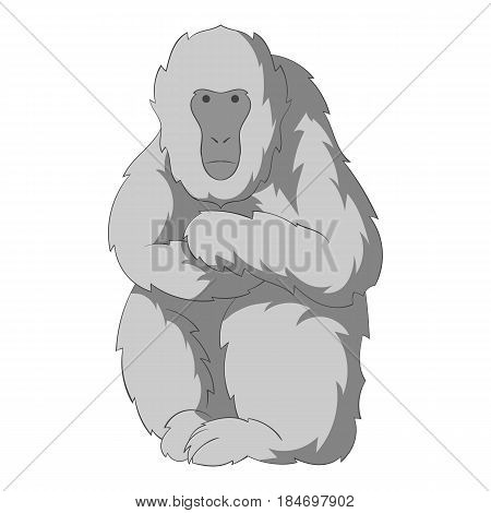 Japanese macaque icon in monochrome style isolated on white background vector illustration