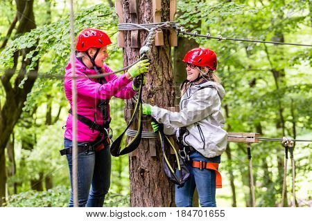 Family  in high rope course or park climbing