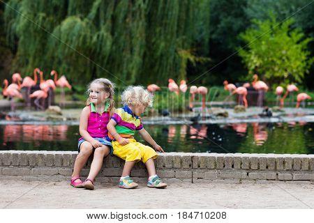 Children Watching Animals At The Zoo