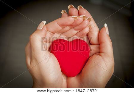 Young woman's hands holding a little red heart. Mother love concept illustration. Charity, benevolence, philanthropy stock image.