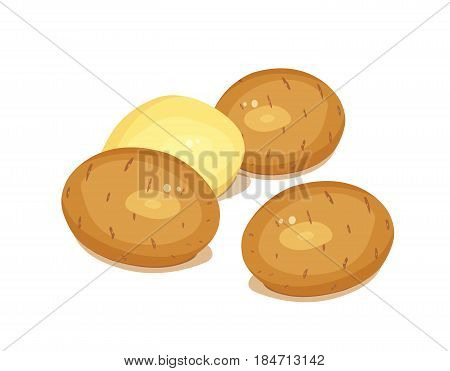 Potatoes. Set of Vegetable foodstuff. Agriculture organic product. Natural meal. isolated on white background. Eps10 vector illustration.