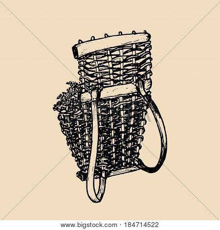 Grape basket illustration. Vintage vector shoulder harvesting corf, wicker drawing. Hand sketched winemaking element in engraved style.