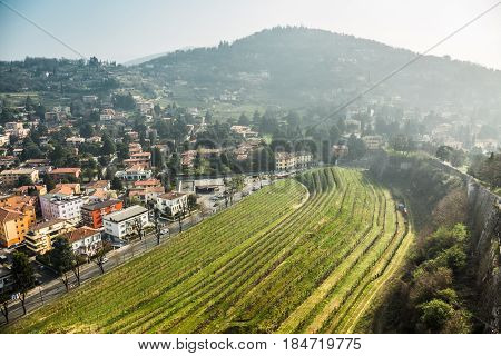The morning city under the mountain and the vineyards of Brescia