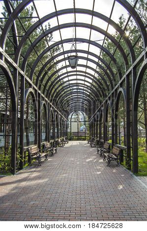 Vine pergola garden. Landscape design. Public square. Springtime.