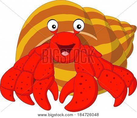 Vector illustration of Cartoon hermit crab on white background
