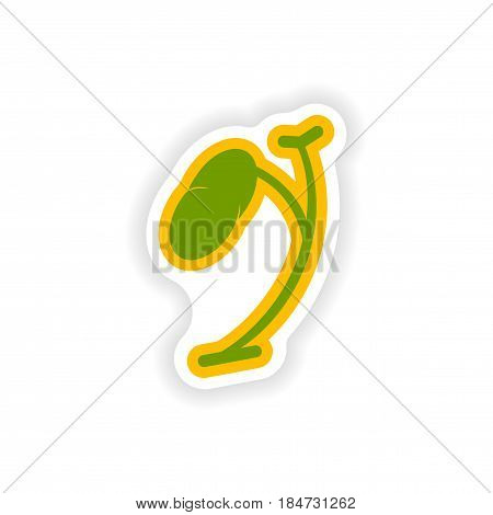paper sticker on white background body spleen