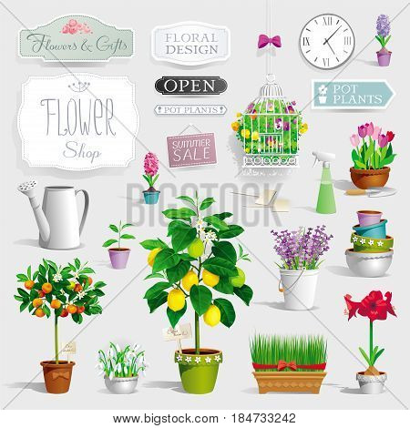 Big collection of the pot plants citrus trees flowers garden tools and signboards decoration of flower shop windows and showcases banners posters and sales