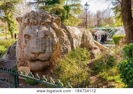 IFRANE,MOROCCO - APRIL 5,2017 - Sculpture of a lion in a park of the city Ifrane in Morocco. Ifrane is a city in the Middle Atlas region of Morocco.