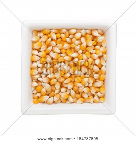 Raw corn kernels in a square bowl isolated on white background