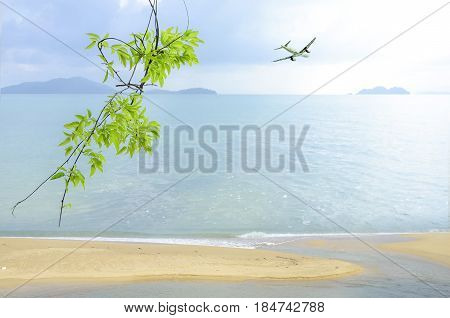 Vacation Background At The Seaside.