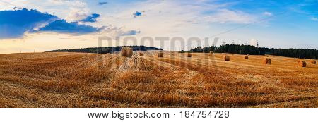 Autumn field with hay bales after harvest. Field of cut grass with straw bales. Beautiful sunset sky. Rural landscape with haystacks. Panoramic shot.