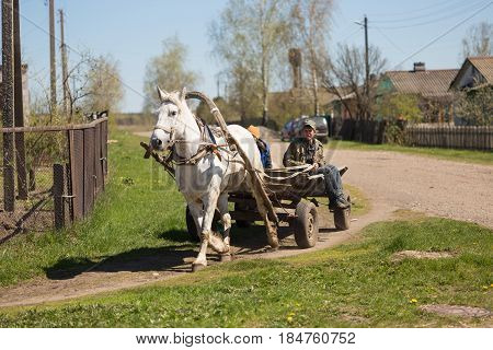 GOMEL BELARUS - May 3 2017: A cart with a horse rides around the Villehage