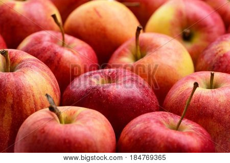 Many Red Apples, Fresh Fruit Background In Market