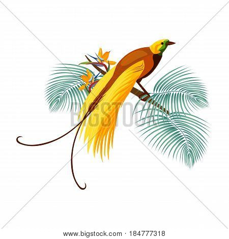 Greater bird-of-paradise with brown feather and long yellow tail sitting on branch with thin leaves and flowers vector illustration