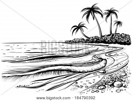 Ocean or sea beach with waves sketch. Black and white vector illustration of sea shore with palms. Hand drawn seaside view.