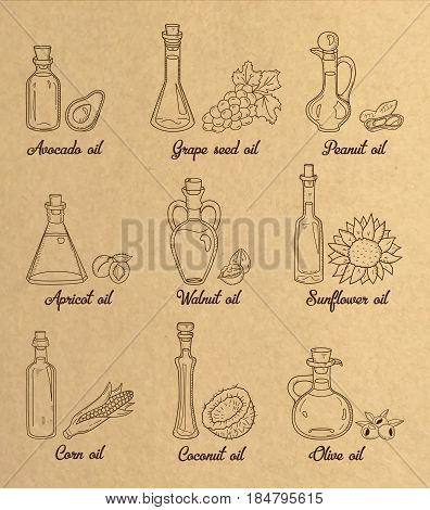 9 brown cooking oils in vintage sepia style. Retro hand drawn set of edible vegetable food oil. With origin products olive, apricot, corn, grape seed, walnut, coconut, avocado, peanut and sunflower.