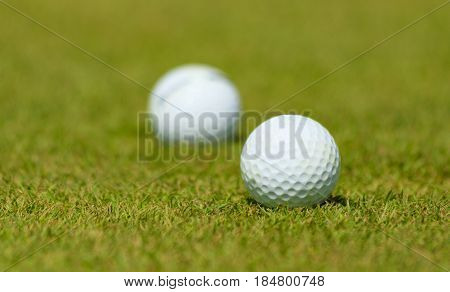 Golf course with balls on a green background.