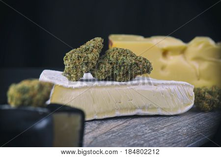 Detail of dried cannabis bud (Cheese strain) over cheesy slice - medical marijuana edibles concept