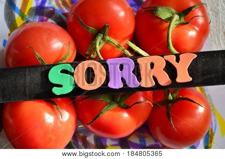 word sorry on a  abstract colorful background