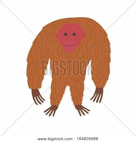 Standing cute Uakari animal cartoon character isolated on white background. vector illustration for children