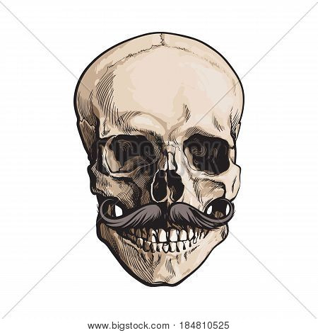 Hand drawn human skull with curled upward hipster moustache, sketch style vector illustration isolated on white background. Realistic front view hand drawing of human skull with moustache, whiskers