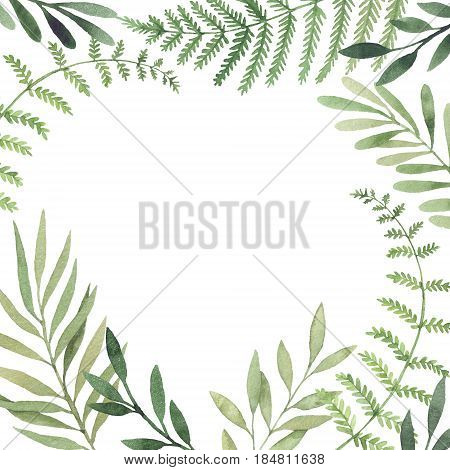 Hand Drawn Watercolor Illustration. Botanical Square Frame With Green Leaves, Branches And Herbs. Fl