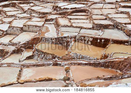 Brown Salt Maras In Peru