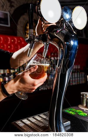 The bartender pours the beer into the glass from the beer tap