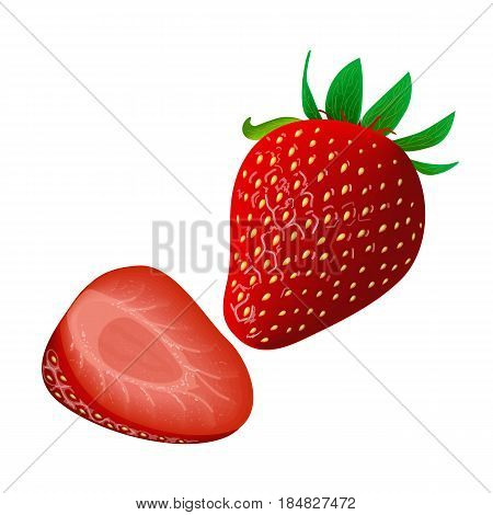 Ripe juicy Strawberry isolated on white. Whole and slice. Side view. Close up. vector illustration. for food design, cooking, cosmetics, perfume, ointment. health care, ointments perfumery label tag