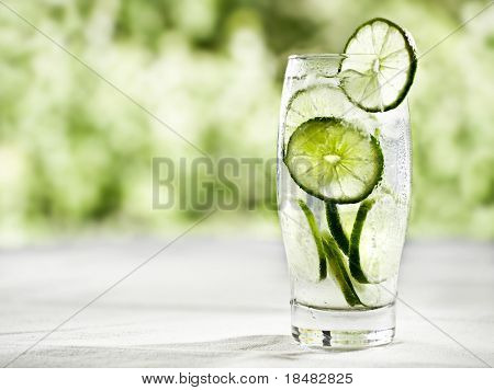 lime drink with extra copysapce