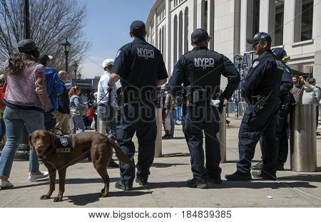 BRONX NEW YORK USA - APRIL 10: NYPDCounter-terrorism Bureau officers during opening day at Yankee Stadium. Taken April 10 2017 in New York.