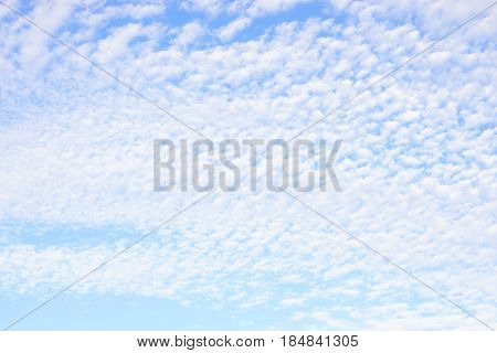 Blue sky and altocumulus clouds may be used as background.