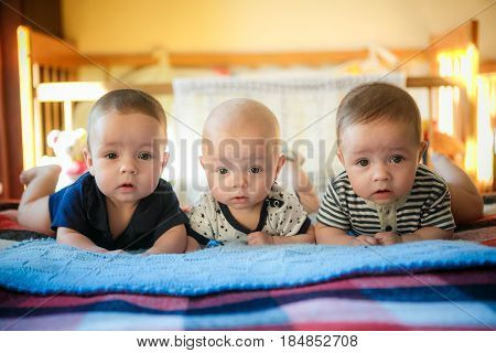 Portrait of newborn triplets are lying in the bed