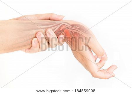 wrist muscle injury white background wrist pain