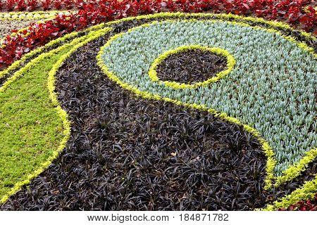 Flower bed background