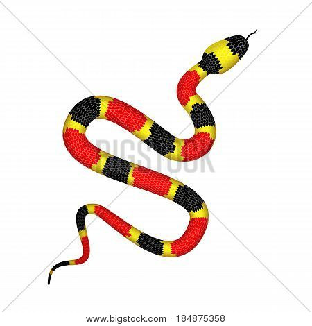 Vector 3d Illustration of Coral Snake or Micrurus Isolated on White Background. Serpent with Red Black and Yellow Stripes