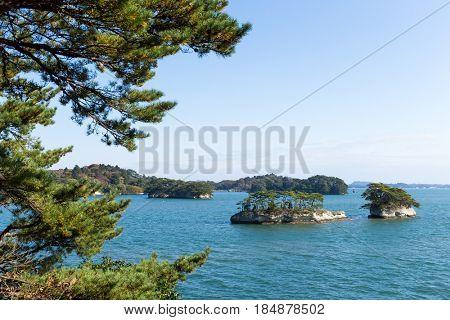 Matsushima and sunshine