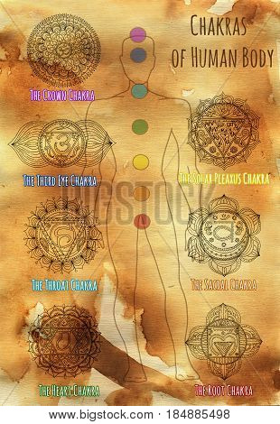Collection of sacral chakras on human silhouette against paper textured background. Hand drawn graphic illustration, esoteric drawings