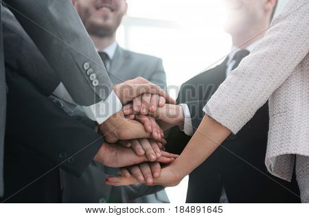 concept team: friendly business team should put their palms toge