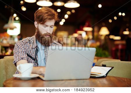 Handsome young trader analyzing financial market via laptop while sitting in comfortable coffeehouse, waist-up portrait